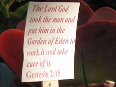 Bible verses about gardening-thinking about painting on rocks or laminating and putting on stakes for a garden plot at a church.