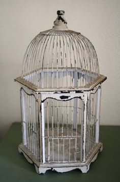 Old bird cage, I think I might repaint mine