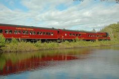 Cape Cod Central Railroad--travels through cranberry bogs and marshes. During the 2 hour ride, a narrator explains history of the Hyannis, MA region.