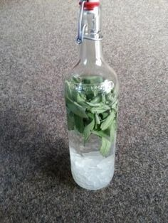 Sage schnapps- The perfect Sage Schnapps recipe with picture and simple step-by-step instructions: Wash out the hot pot, remove sage leaves from the stems … Source by - Schnapps Recipe, Ginger And Honey, Vegetable Drinks, Diet Drinks, Healthy Eating Tips, Healthy Food, Pots, Refreshing Drinks, Iced Tea