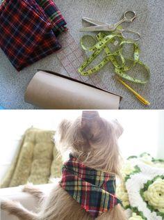 Top 10 Cute DIY Pet Clothes