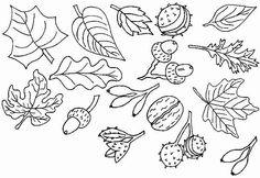 ilustraciones frutos otoñales para colorear - Buscar con Google