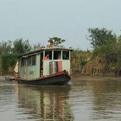 Bresil Aire de conservation du Pantanal