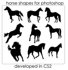 Ultimate Collection of Photoshop Custom Shapes