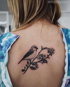 64 Ideas Bird Tattoo Back Branches Top Tattoos, Trendy Tattoos, Finger Tattoos, Girl Tattoos, Tatoos, Sleeve Tattoos For Women, Tattoos For Women Small, Apple Blossom Tattoos, Bird Tattoo Back