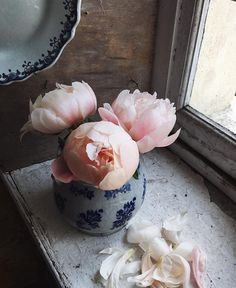 Peony perfection captured by @cecilemoli #flowers #botanicals #spring by figandyarrow
