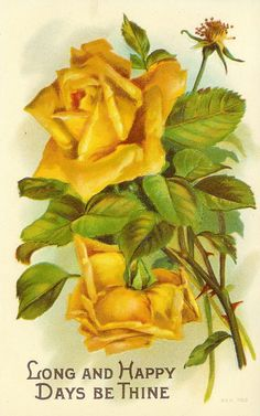 Vintage Postcard ~ Yellow Roses ~ Long and Happy Days be Thine