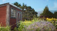 Heidrun Meadery - Point Reyes Station