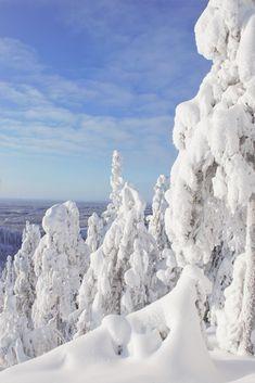 Leena Rissanen Finland, Outdoor, Outdoors, Outdoor Games, The Great Outdoors
