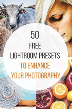 We've hand curated 50 free Lightroom presets you can download and use to enhance your photos. Click through to find a perfect preset for you!