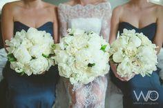 Williams Photography   Sarah Jono Web   All Seasonal Flowers, Bouquets, December, Seasons, Wedding Dresses, Photography, Fashion, Bride Dresses, Moda