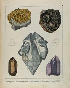 Victorian Illustration, Type Illustration, Botanical Illustration, Minerals And Gemstones, Rocks And Minerals, Schmidt, Crystal Drawing, Mineralogy, Magic Cards