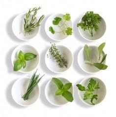 Dicas para usar ervas frescas e quais os alimentos com que elas combinam. Um quadro com nove das ervas mais usadas e conhecidas.