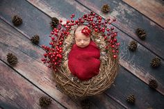 www.stefaniepolitiphotography.com newborn photography, newborn photographer, NJ newborn photographer, Hunterdon County newborn photographer, newborn baby girl, baby, baby girl, Clinton newborn photographer, winter, holiday, Christmas, berries, wreath, pinecones