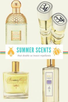 How your Perfume can Double as an Insect Repellent. Learn which scents repel bugs along with a DIY Bug Spray Recipe. | www.theperfumeexpert.com