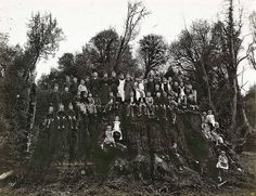 Around 1890, loggers chopped down a coast redwood near Eureka, Calif., creating one of the world's largest stumps: 32.5 feet wide at chest height, probably 2,000 years old, a base for a tree that may have topped 400 feet.