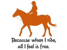 A horse quote that says it all. The decal measures 28 X 30 inches when assembled as shown. You can choose the color for the horse, also the color and font for the quote. Please contact seller with you