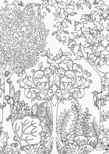 Forest Coloring Book | AdultcoloringbookZ Enchanted Forest Book, Enchanted Forest Coloring Book, Magical Forest, Adult Coloring, Coloring Books, Forest Coloring Pages, Learning Process, Woodland Creatures, Fantasy Landscape
