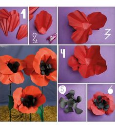 """""""Everything Oz: The Wizard Book of Make and Bakes"""" How to make poppies! """"Everything Oz: The Wizard Book of Make and Bakes"""" How to make poppies!,Prom """"Everything Oz: The Wizard Book of Make and. Wizard Of Oz Play, Wizard Of Oz Decor, Wizard Of Oz Musical, The Wizard Of Oz Halloween, Diy Flowers, Paper Flowers, Anzac Day, Trunk Or Treat, Red Paper"""