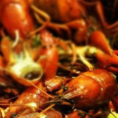 Dinner tonight! Yelpers Crawfish Boil! - Bea's of Bloomsbury