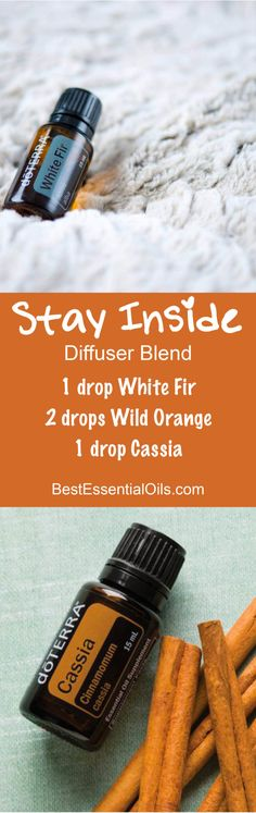 Stay Inside Essential Oils Diffuser Blend ••• Buy dōTERRA essential oils online at www.mydoterra.com/suzysholar, or contact me suzy.sholar@gmail.com for more info.