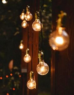 This is a fun idea if an outdoor space needs to be separated....could kind of form a wall. Bulbs could also be suspended indoors in a more modern setting, overhead at various lengths. Hmmm...