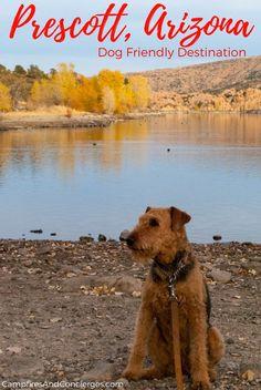 USA - Arizona - Prescott Dog-friendly travel #arizona #prescott