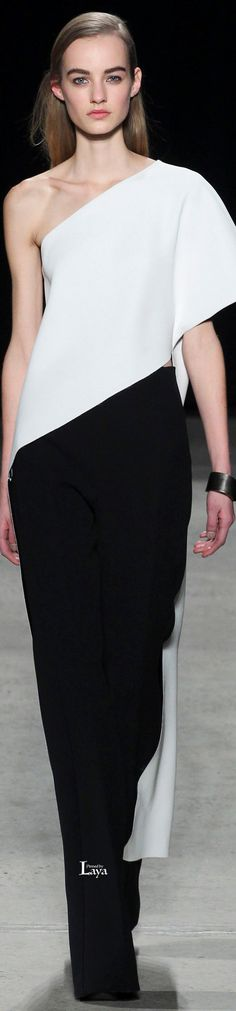 Narciso Rodriguez Fall Winter 2015-16 RTW www.SocietyOfWomenWhoLoveShoes.org