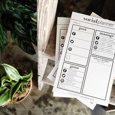 socialplanner_01.jpg