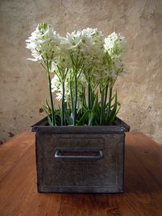 White flowers....(This is a beautiful idea...I have an old tin box that looks just like this)