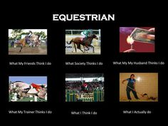 Equestrian Interpretations - 3