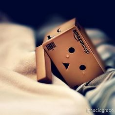 Danbo crying