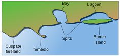 Barrier Island: coastal landform and type of barrier system, relatively narrow strips of sand that are parallel to the mainland coast; usually occur in chains, consisting of a few islands to more than a dozen; length and width of barriers are related to tidal range, wave energy, sediment supply, sea-level trends, basement controls