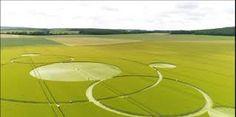 """Résultat de recherche d'images pour """"crop circle"""" découvert dans un champ de céréales du Berry"""""""