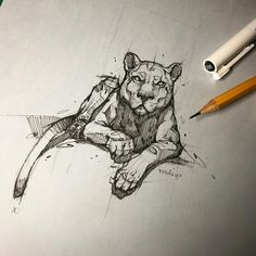 Nov 2019 - Psdelux is a pencil sketch artist based in Tatabánya, Hungary. He usually draws animal sketches. Psdelux also makes digital drawings. Dog Tattoos, Animal Tattoos, Pencil Art Drawings, Drawing Sketches, Cat Sketch, Animal Sketches, Animal Drawings, Elephant Tattoos, Pen Art