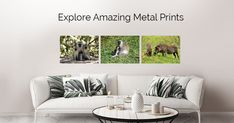 Metal prints of my art and photography available on Displate. Please check it out.