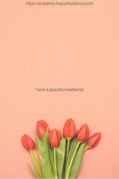 Have a peaceful weekend, freelancers. Job Career, Virtual Assistant, Online Jobs, Quotes, Quotations, Quote, Shut Up Quotes