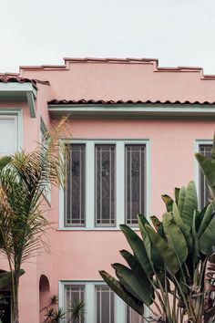 pink house / architecture / palm leaves