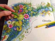 """Colored Pencils Coloring - """"The Magical Water Lily Pond"""" - YouTube"""