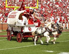 """The Sooner Schooner is the official mascot of the sports teams of the University of Oklahoma Sooners. Pulled by two white ponies named Boomer and Sooner, it is a scaled-down replica of the Conestoga wagon used by settlers of the Oklahoma Territory around the time of the Land Run of 1889. Its name comes from the common term for such wagons (""""prairie schooners"""") and the name for settlers who snuck into the Territory before it was officially opened for settlement (""""Sooners"""")."""