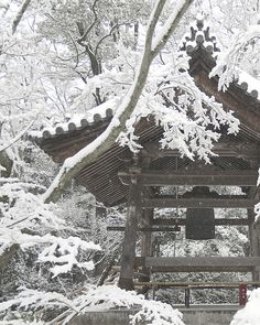 TY for being here & now. Have a nice day to start the year 2013 no matter where you are. Peace / Kinkaku-ji Temple in snow, Kyoto, Japan