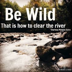 Be wild, that is how to clear the river.. ~ Clarissa Pinkola Estes WILD WOMAN…