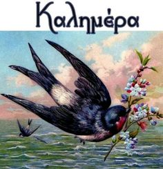 Greek Language, Good Morning, Happy Birthday, Romance, Animals, Beautiful, Buen Dia, Happy Brithday, Romance Film