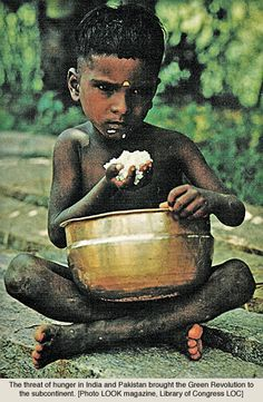 hunger in India - Google Search