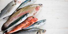 Ψάρια και η εποχή τους
