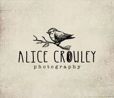 Bird photography logo - Eps and Png file watermark - Premade custom logo - vintage bird logo for photographers