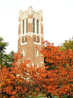 I miss hearing the carillon of Beaumont Tower.  Such a peaceful sound!