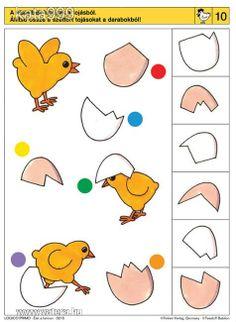 pasen visuele discriminatie voor kleuters / preschool visual discrimination