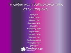 Greek Quotes, Sagittarius, Zodiac Signs, Astrology, Thoughts, Sayings, Funny, Relationships, Lyrics