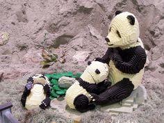lego-world-2009-632-wild-animals